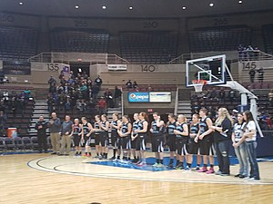 Lady Falcons Section Runners Up